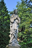Old statue. Ancient statue of Our Lady of the cemetery royalty free stock image