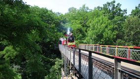 Old steam train crossing a bridge in the forest stock footage