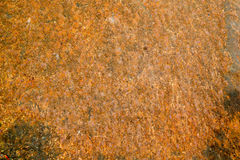 Old steel plate with rust pattern background Royalty Free Stock Image