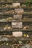 Old steps. Fallen autumn leaves on an old stone staircase Stock Photo