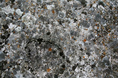 Old stone Stock Image