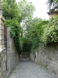 Old stone alley with green vegetation and white jasmin flowers around, Bergamo, Italy. Old stone alley with green vegetation and white jasmin flowers around stock photos