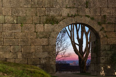 Old stone arch door in a wall and a far tree on sunset Stock Photos