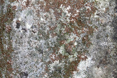 Old Stone background. A stone surface for decorative works Stock Images