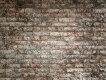 Old stone brick wall background Royalty Free Stock Image