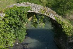 Old stone bridge covered with ivy on the background. Of a mountain river Royalty Free Stock Image