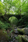 Old stone bridge hidden in the forest. Royalty Free Stock Image