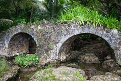 Old stone bridge in the jungle. Old stone arch bridge in the jungle, Guam Royalty Free Stock Photos