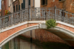 Old stone bridge in Venice. Royalty Free Stock Image