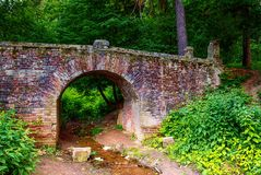 Old stone bridge in the woods Stock Images