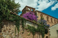 Old stone buildings with flowering trees and bindweed at Caceres. Old stone buildings with flowering trees and bindweed in a sunny day at Caceres. A cute and stock images