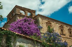 Old stone buildings with flowering trees and bindweed at Caceres. Old stone buildings with flowering trees and bindweed in a sunny day at Caceres. A cute and royalty free stock image