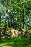 Old stone castle ruins Royalty Free Stock Photography
