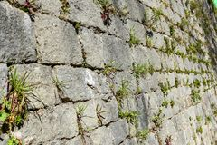 Old stone castle wall made of stone brick slabs. Ancient medieval fortified wall fence with green grass and moss texture pattern stock photos