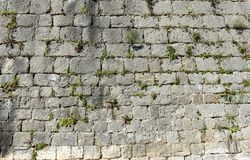 Old stone castle wall made of stone brick slabs. Ancient medieval fortified wall fence with green grass and moss texture pattern royalty free stock image