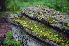 Old stone coffin with moss closeup Stock Photo
