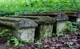 Old stone coffins in the woods Stock Photography