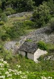 Old stone cottage. Old stone croatian cottage in island Brac Stock Photography
