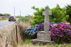 Old stone cross and car. Old stone cross located near the road. Blooming hydrangea flowers Stock Photos