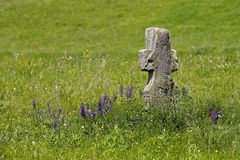 Old stone cross on a green meadow Stock Photo