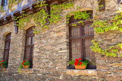 Old stone facade of house. Old stone facade of house twined wild grapes. Windows decorated with red flowers in ceramic pots stock photo