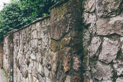Old stone fence and green deciduous plants behind Royalty Free Stock Photos