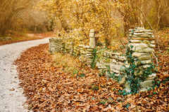 Old stone fence in park Stock Photos