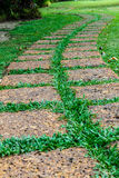 Old stone footpath on green grass. Picture of old stone (laterite) footpath on green grass Stock Photography