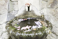 Old stone fountain with flowers Stock Image
