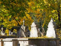 Old stone graves at autumn leaves background. Copy space Royalty Free Stock Images