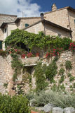 Old stone house with plants and flowers Royalty Free Stock Photography