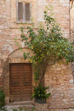 Old stone house with plants Royalty Free Stock Photos