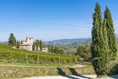 Old stone house in vineyard in Tuscany in Italy. Old stone house in vineyard near Castellina in Chianti in Tuscany in Italy Royalty Free Stock Images