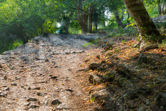 Old stone pathway in the park Stock Image
