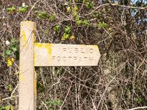 Old stone public footpath sign post with yellow moss and branche. S background; essex; england; uk Stock Photos
