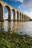 Old stone railway bridge and seaweed Royalty Free Stock Images
