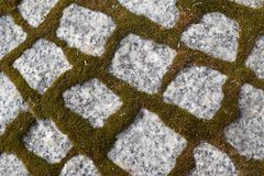 Old Stone Road. Or Pavement Closeup. Granite Sidewalk with Moss Royalty Free Stock Photo