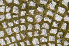 Old Stone Road. Or Pavement Closeup. Granite Sidewalk with Moss Stock Photos