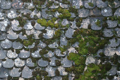 Old stone roof covered with moss Royalty Free Stock Images