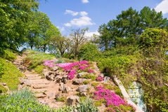 Old stone staircase. Footpath in beautiful park with violet flowers around Royalty Free Stock Images