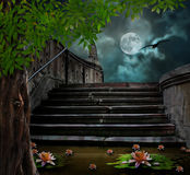 Old stone staircase in celebration of Halloween Stock Image