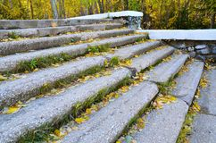 An old stone staircase in the city park Royalty Free Stock Photo