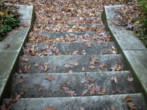 Old Stone Staircase. An old stone staircase leads downward. It is autumn and the leaves are covering each step Stock Photo