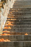 Old stone staircase and wall Stock Photo