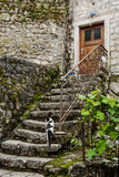 Old stone stairs with cat Royalty Free Stock Image