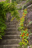 Old stone stairs in the garden. Old stone stairs with flowers and plants in the garden Stock Photo