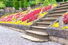 Old stone stairs in Glasgow country Pollok Park blossoming garden royalty free stock image