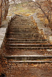 Old stone stairs leading up in autumn park Stock Images