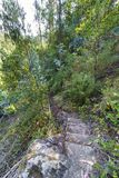 Old stone stairs on a narrow path in the middle of a hillside co royalty free stock image