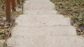 Old Stone stairs in in the Park.  stock footage